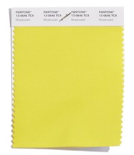 Pantone-Fashion-Color-Trend-Report-London-Spring-2018-Swatch-Meadowlark