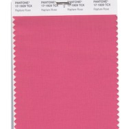 Pantone-Fashion-Color-Trend-Report-London-Spring-2018-Swatch-Rapture-Rose