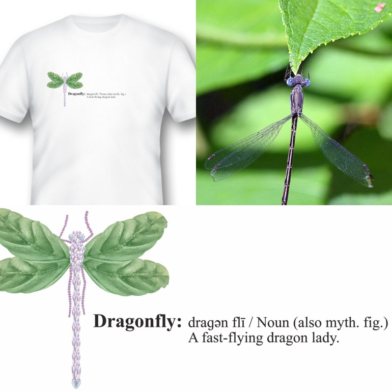 DragonflyTshirtPhoto Jul 11, 10 53 23 AM - copie