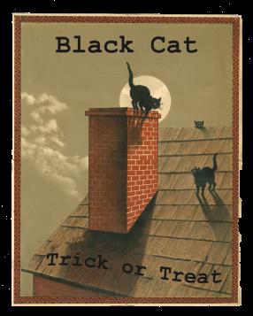 Black Cat Trick or Treat 8 x 10 PNG