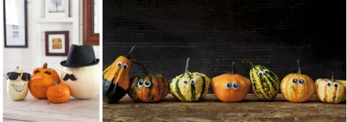CollPumpkins3