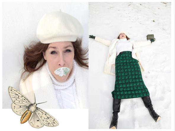 Moth Collage4