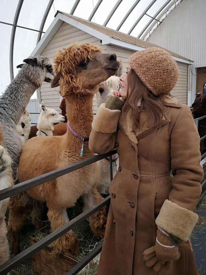 alpacasrust