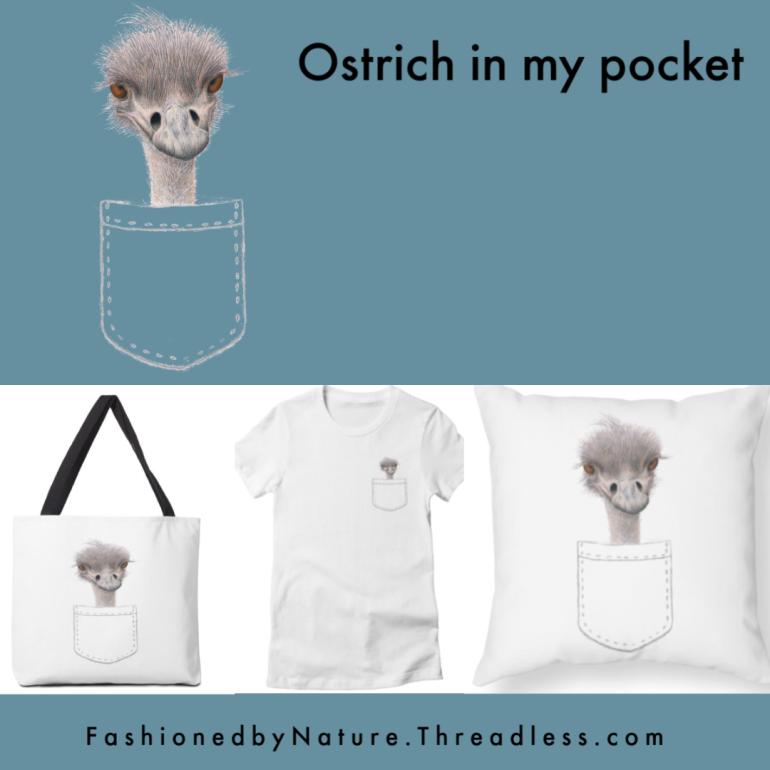 Instagram Ostrich