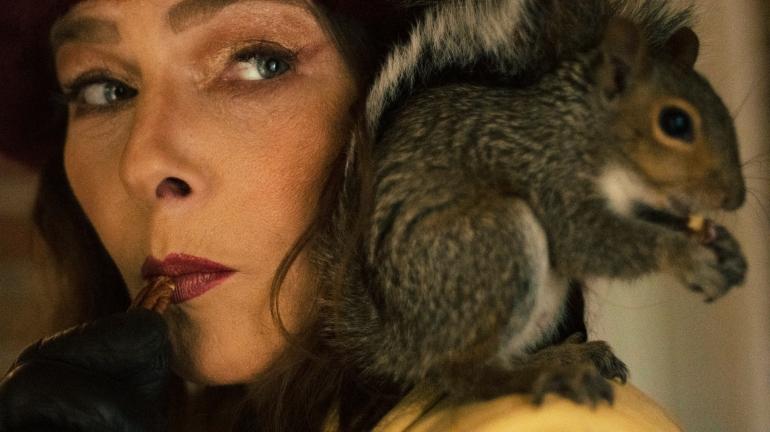 #Squirrelonwomanshoulder #Picadjusted